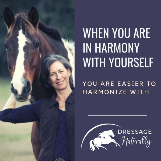 Dressage Naturally Harmony