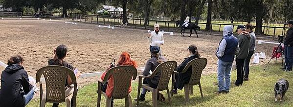 Dressage Naturally ride a test clinic