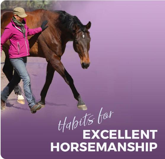 Karen Rohlf Dressage Naturally Horsemanship Course