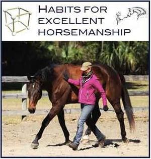 Habits For Excellent Horsemanship Course
