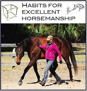 Habits For Excellent Horsemanship Course