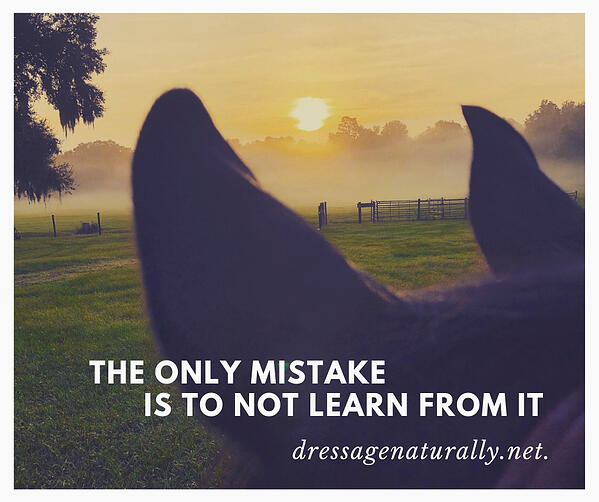 Dressage Naturally Learn From Mistakes