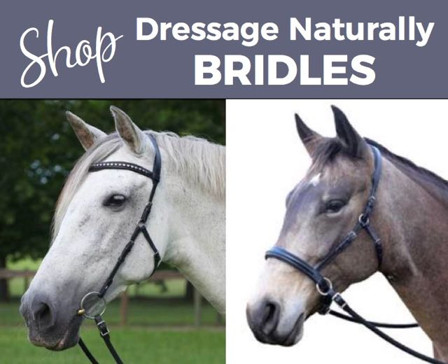 shop Dressage Naturally Bitless bridle ad