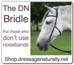 shop bridle